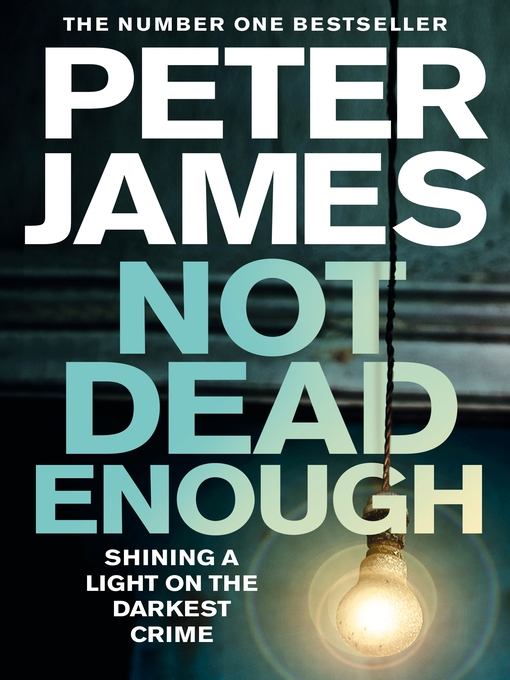 Not Dead Enough (eBook): Detective Superintendent Roy Grace Series, Book 3